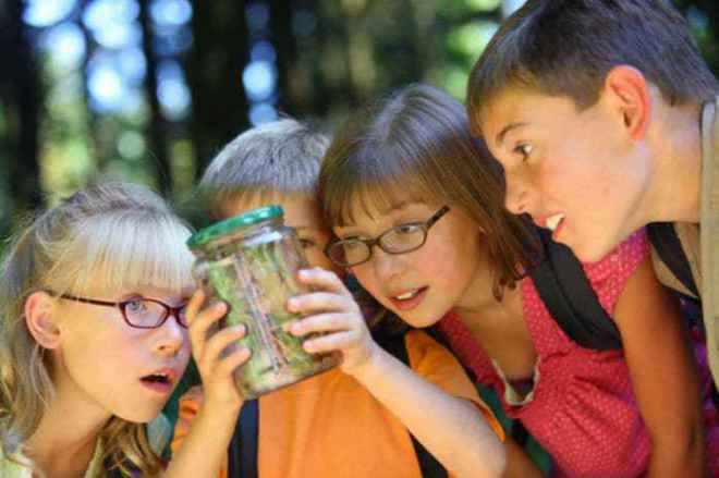 10 Summer Ideas And Activities For Kids | SchoolWiser Blog Featured Image
